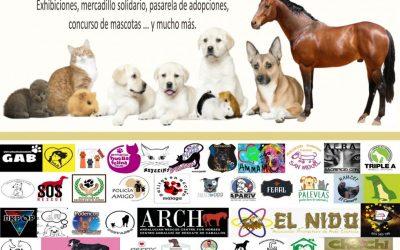 """Este domingo el Recinto Ferial de Alhaurín el Grande acogerá la primera edición de """"Animalhaurín"""""""