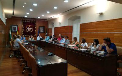 Se celebra el último Pleno de la legislatura 2015-2019