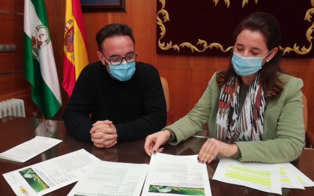 El Ayuntamiento presenta 3 proyectos a los Fondos Europeos de Recuperación por valor de 33 millones de euros
